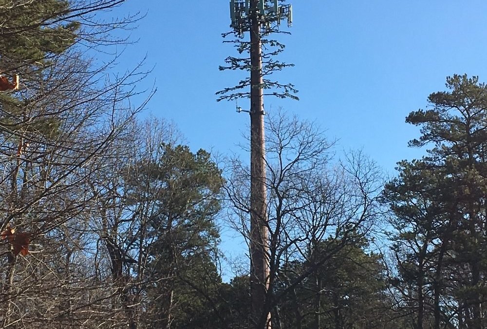 Letter: Give residents a voice on cell tower