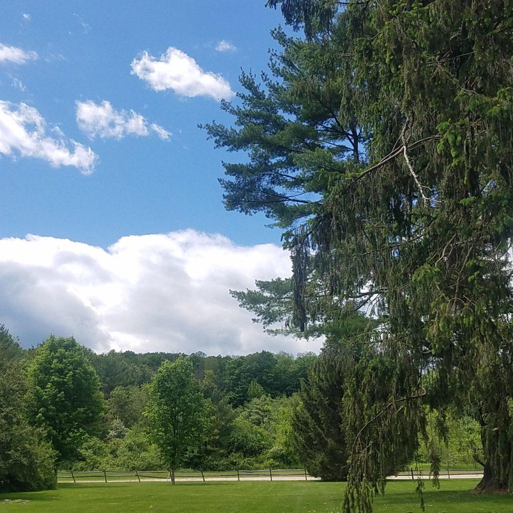 Our Natural Landscape